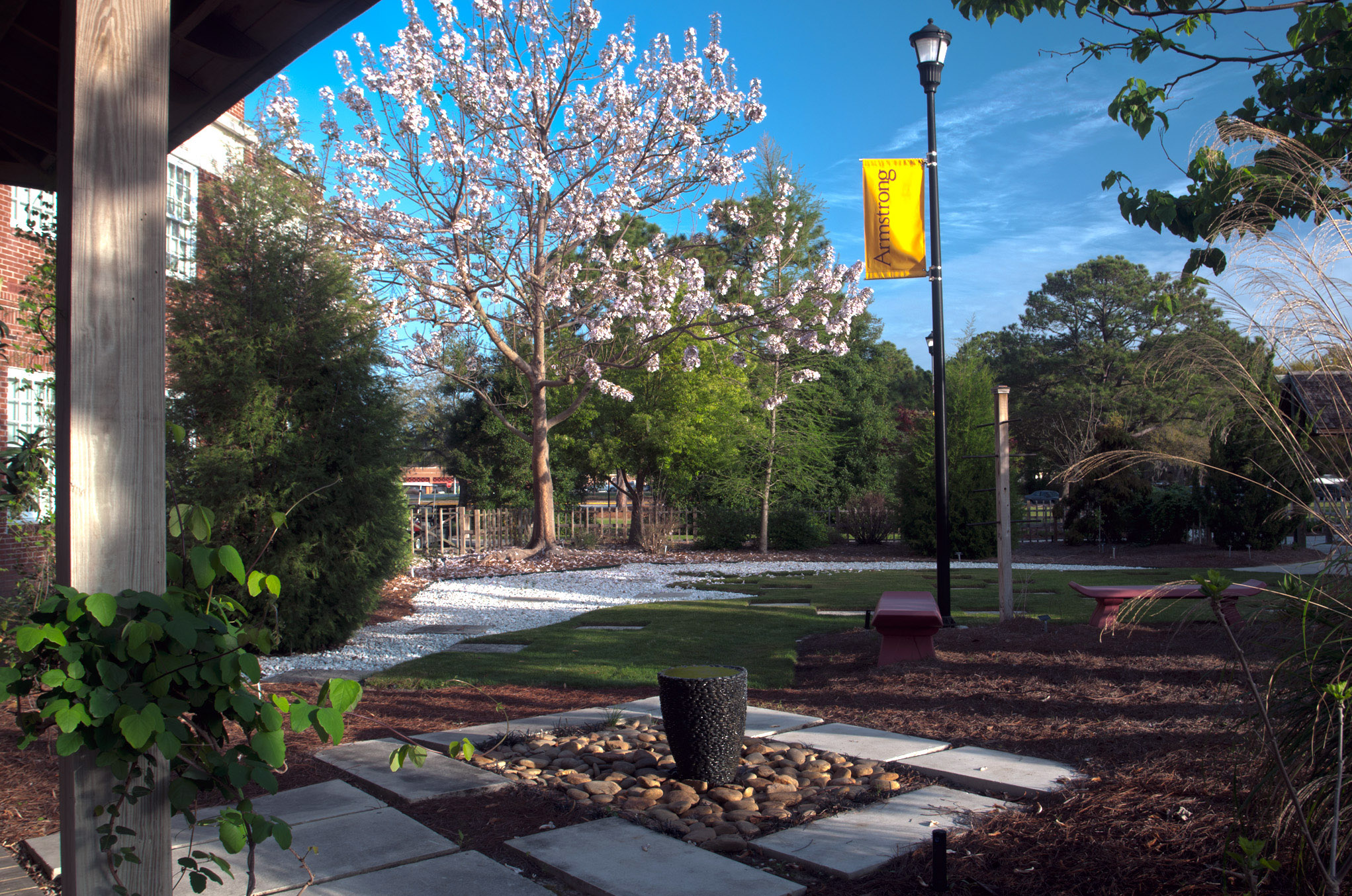 Armstrong State University >> Armstrong State University Arboretum Wins Savannah Tree
